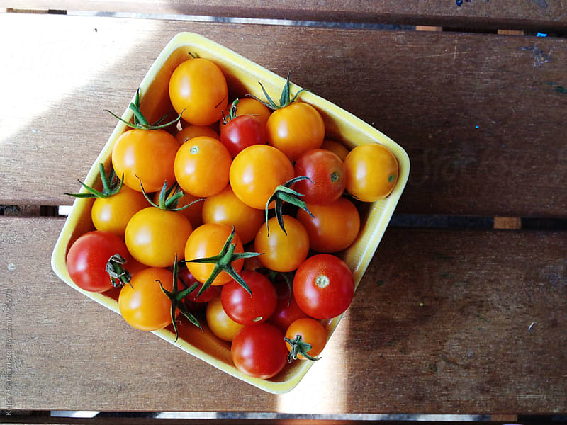 Fresh cherry tomatoes from the garden. by Kelsey Gerhard for Stocksy United