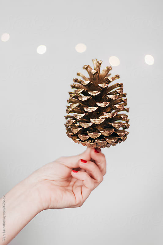 Hand holding a golden pine cone by Vera Lair for Stocksy United