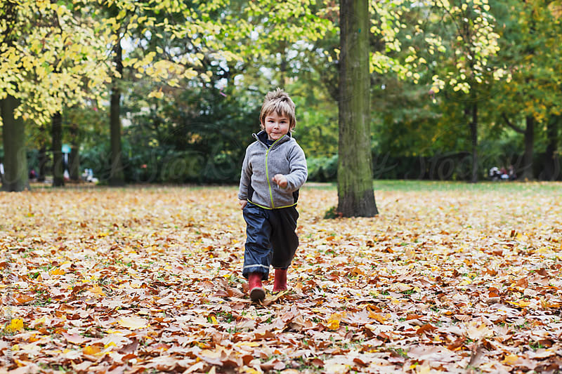 Toddler walking towards camera through leaves by Mima Foto for Stocksy United