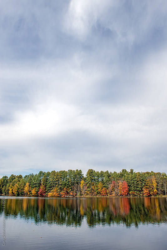 Autumn trees reflected in pond with big sky by Cara Dolan for Stocksy United