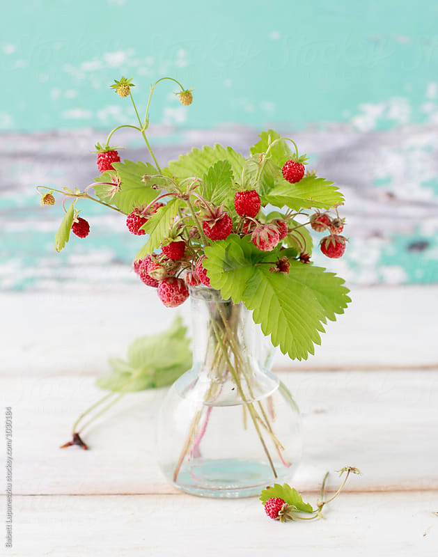 Wild strawberries in a vase by Viktorné Lupaneszku for Stocksy United