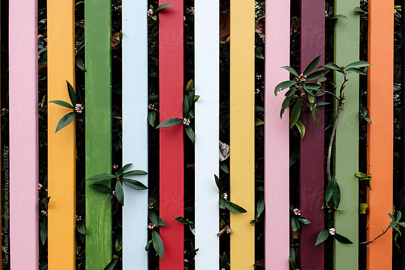Colourful Fence by Gary Radler Photography for Stocksy United