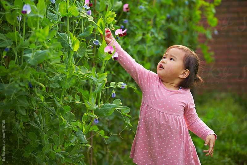 little girl touch bean flower by Bo Bo for Stocksy United