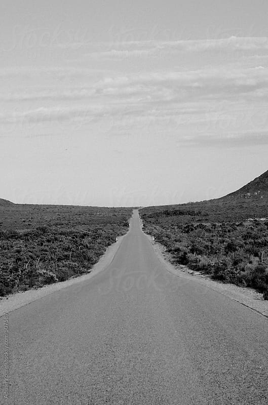 Long Straight Road in a National Park by Adrian P Young for Stocksy United