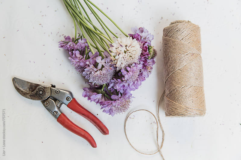 Roll of string next to flowers and garden cutters on white by Lior + Lone for Stocksy United