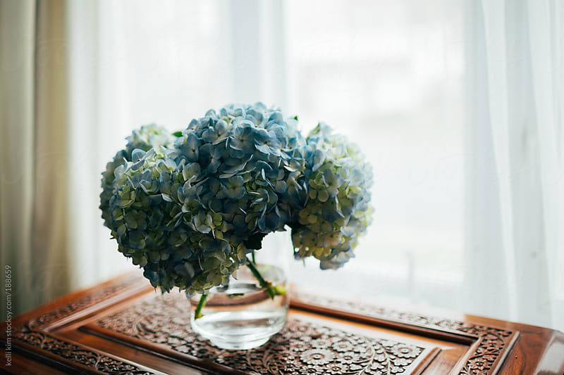 A bouguet of blue hydrangeas on vintage table by kelli kim for Stocksy United