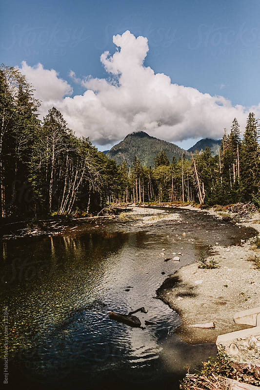 Scenic Pacific Northwest River by Benj Haisch for Stocksy United