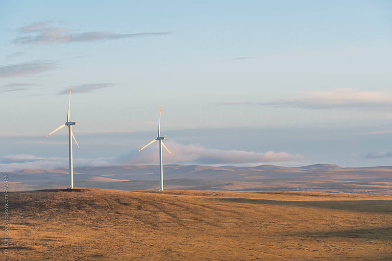 wind farm by unite images for Stocksy United