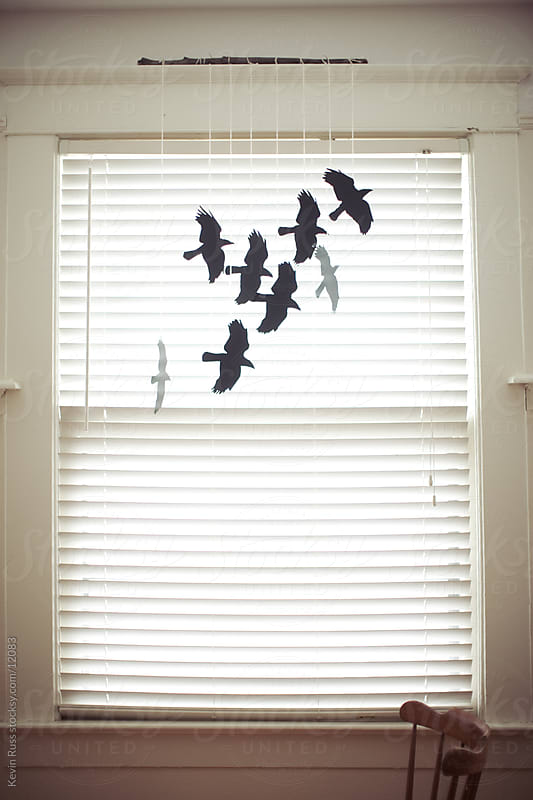 Raven Window by Kevin Russ for Stocksy United