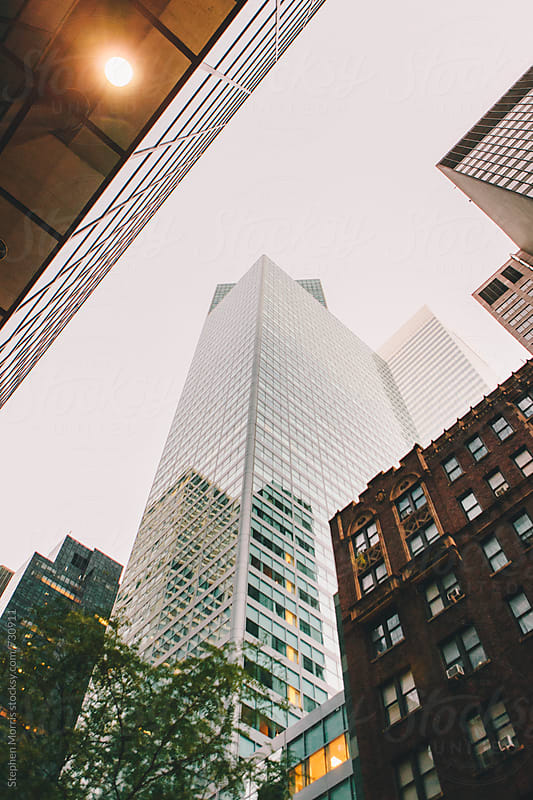 New York City Architecture by Stephen Morris for Stocksy United