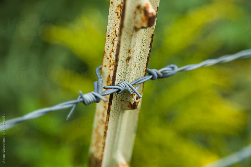 Barbed Wire by Adam Nixon for Stocksy United