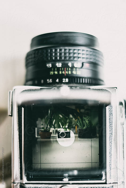 viewfinder by Justin Lim for Stocksy United