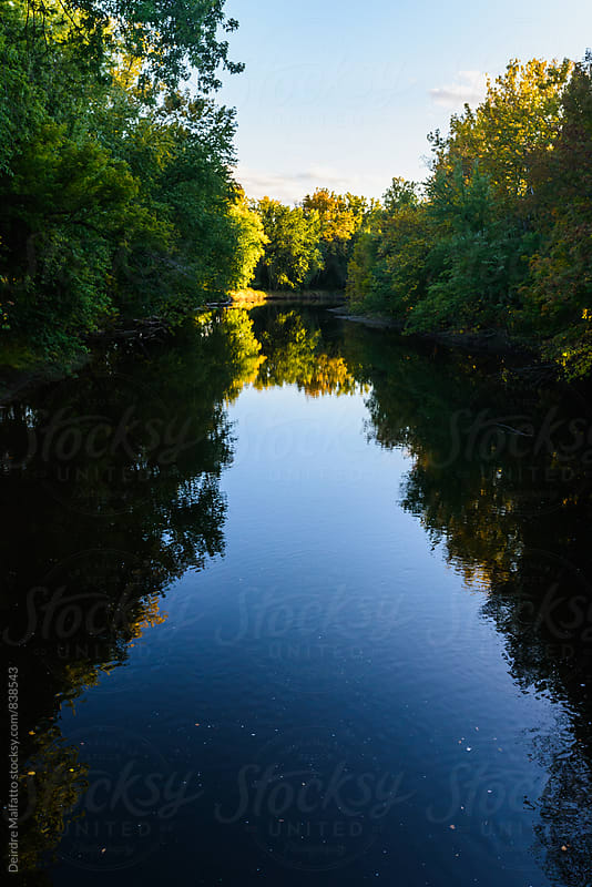 blue creek surrounded by trees in early autumn by Deirdre Malfatto for Stocksy United