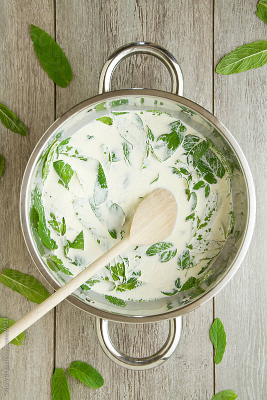 Mint leaves stirred into milk in pan, above by Kirsty Begg for Stocksy United