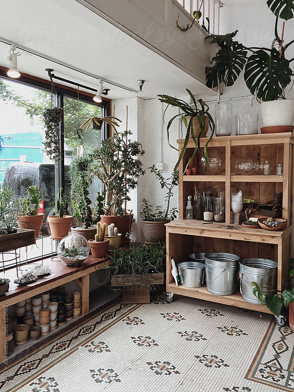 Plants and pots in a shop with tiled floor by KATIE + JOE for Stocksy United
