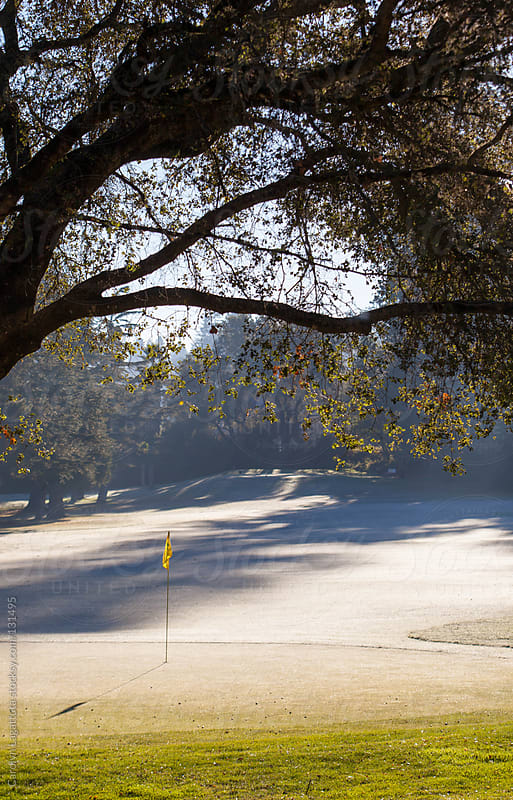 Empty golf course on a cold, winter day by Carolyn Lagattuta for Stocksy United