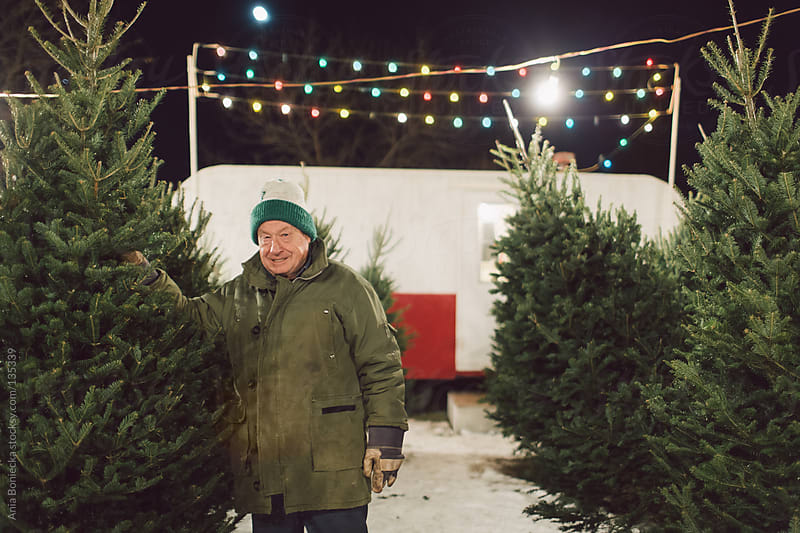 An elderly man posing with a christmas tree on his lot by Ania Boniecka for Stocksy United
