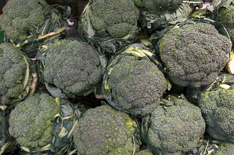 Freshly harvested broccoli flower for sale at the farmer's market by Lawrence del Mundo for Stocksy United