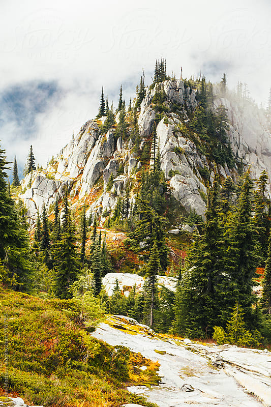 Foggy Rocky Mountain Heights Covered In Subalpine Forest by Luke Mattson for Stocksy United