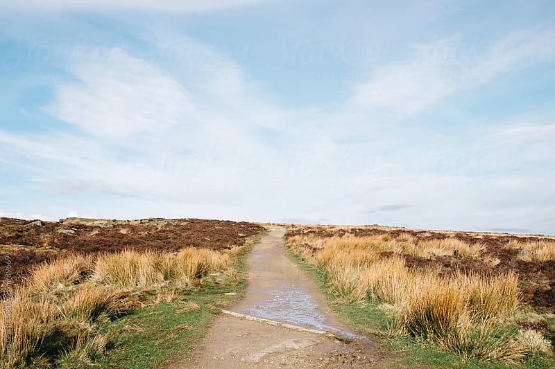 Footpath on Curbar Edge. Derbyshire, UK. by Liam Grant for Stocksy United