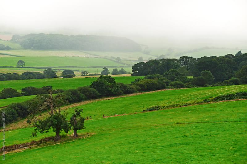 Green hills of foggy England by Sasha Evory for Stocksy United