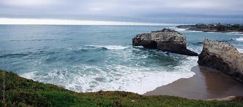 Long wide shot of a beach in Santa Cruz by Carolyn Lagattuta for Stocksy United