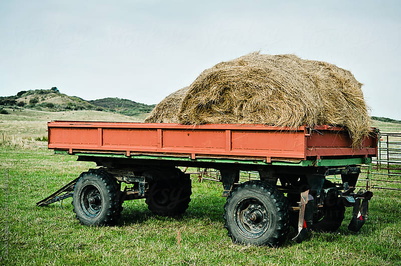Tractor Trailer with a Load of Hay by Claudia Lommel for Stocksy United