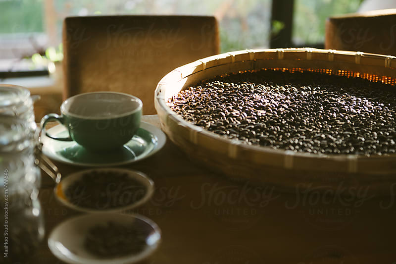 Raw coffee bean by Maa Hoo for Stocksy United