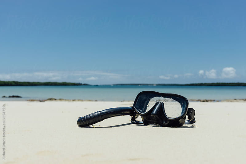 Snorkel on the Beach by Richard Brown for Stocksy United