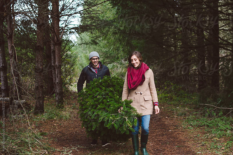 Young couple carrying Christmas tree they cut down through the woods by Kate Daigneault for Stocksy United