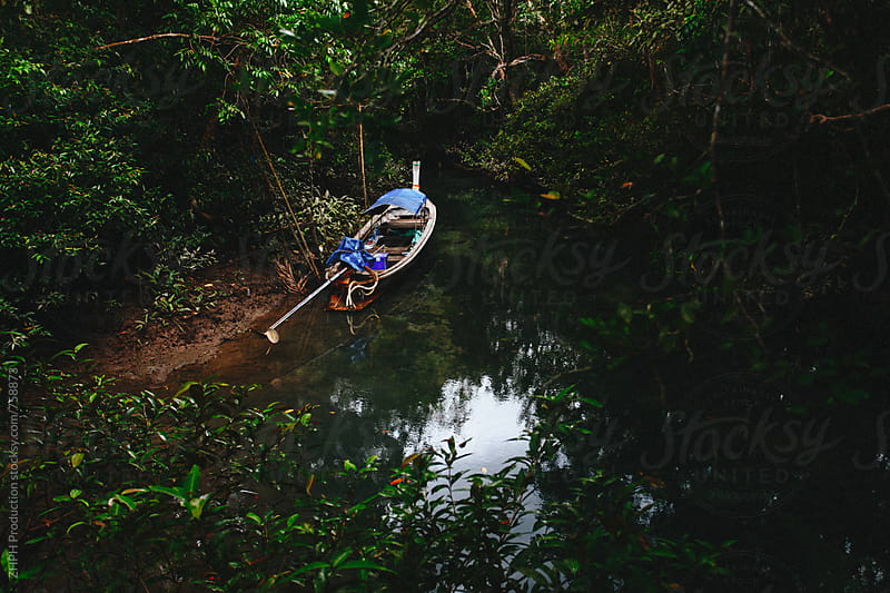 Boat in mangrove by Artem Zhushman for Stocksy United