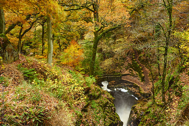 Stone bridge below Aira Force waterfall in Autumn. Cumbria, UK. by Liam Grant for Stocksy United