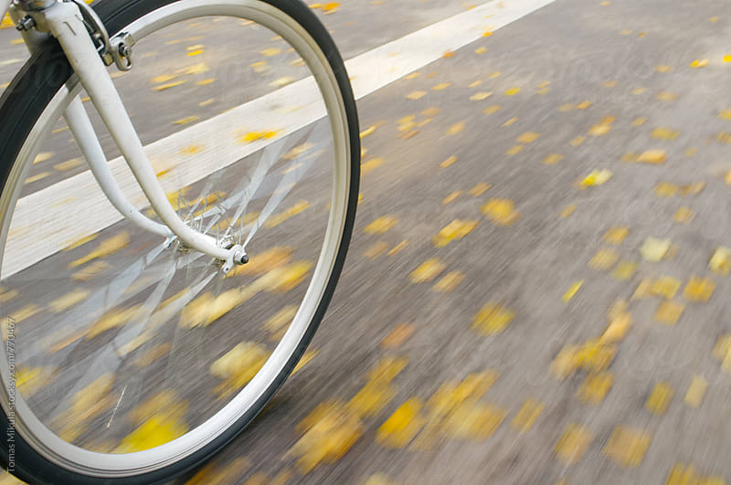 Ride on the bicycle during fall by Tomas Mikula for Stocksy United