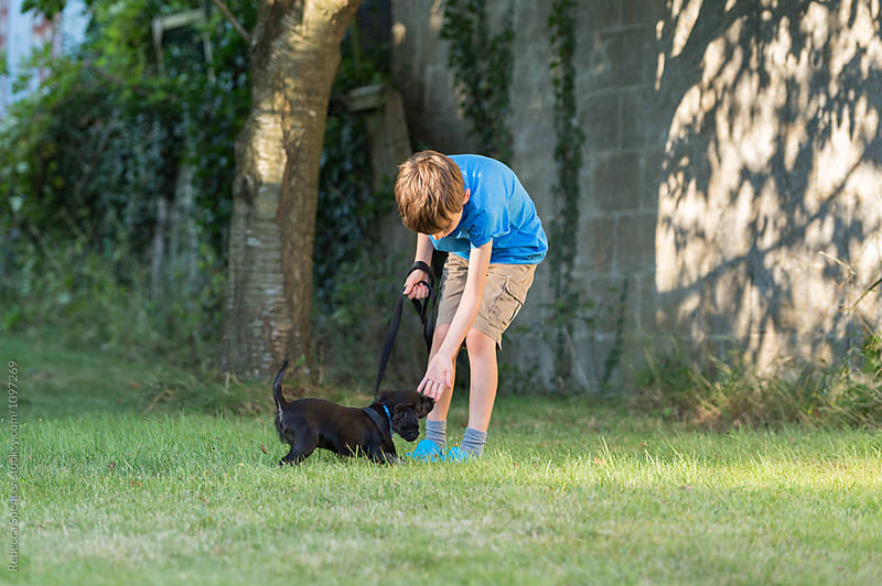 Child training his puppy on a leash by Rebecca Spencer for Stocksy United