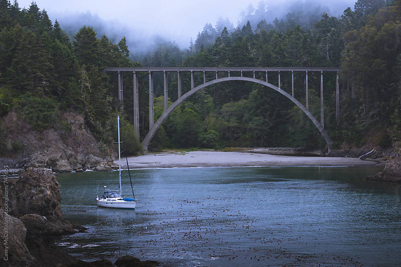 Foggy Cove by Casey McCallister for Stocksy United