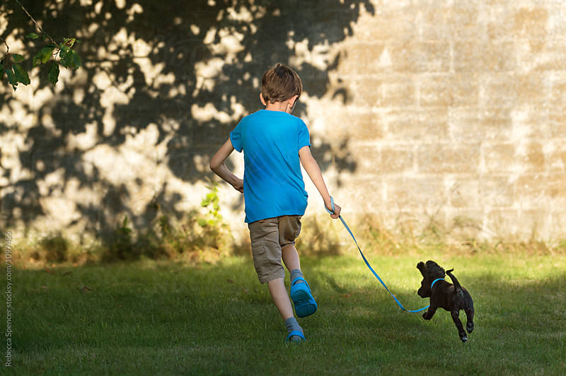 Boy and his puppy on a leash having fun by Rebecca Spencer for Stocksy United