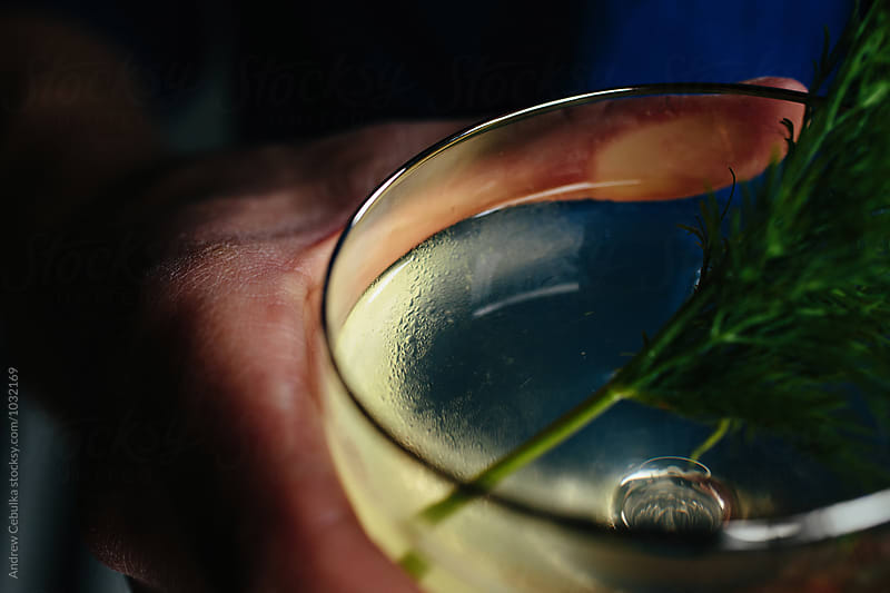 Drink with Garnish by Andrew Cebulka for Stocksy United
