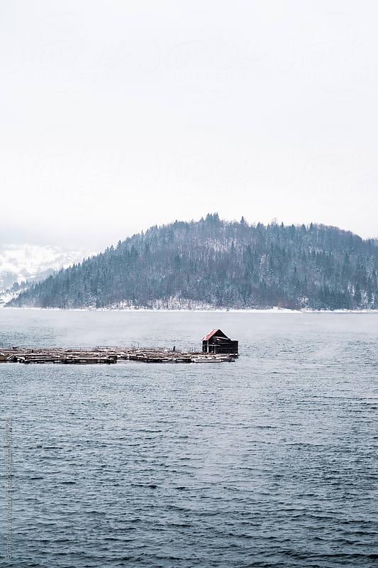 Lake in the Wintertime by Brkati Krokodil for Stocksy United