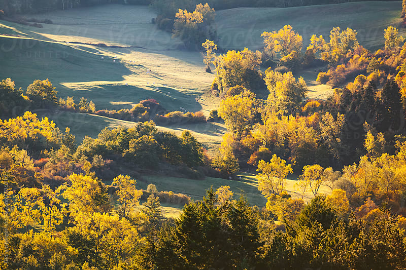 Landscape at Dawn in Central Italy, Autumn Season by Giorgio Magini for Stocksy United