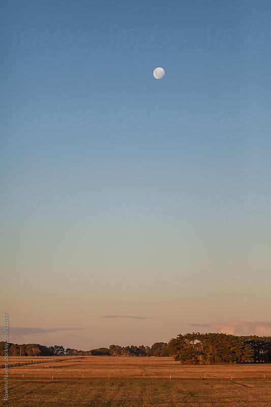 Daytime Moon rising  before sunset on rural landscape by Rowena Naylor for Stocksy United