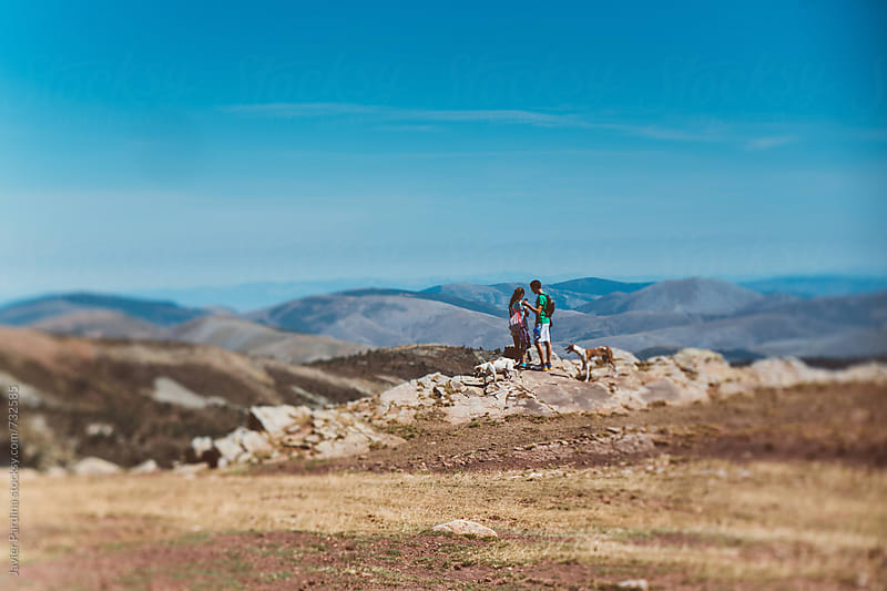 pair enjoying with dogs on mountains by Javier Pardina for Stocksy United