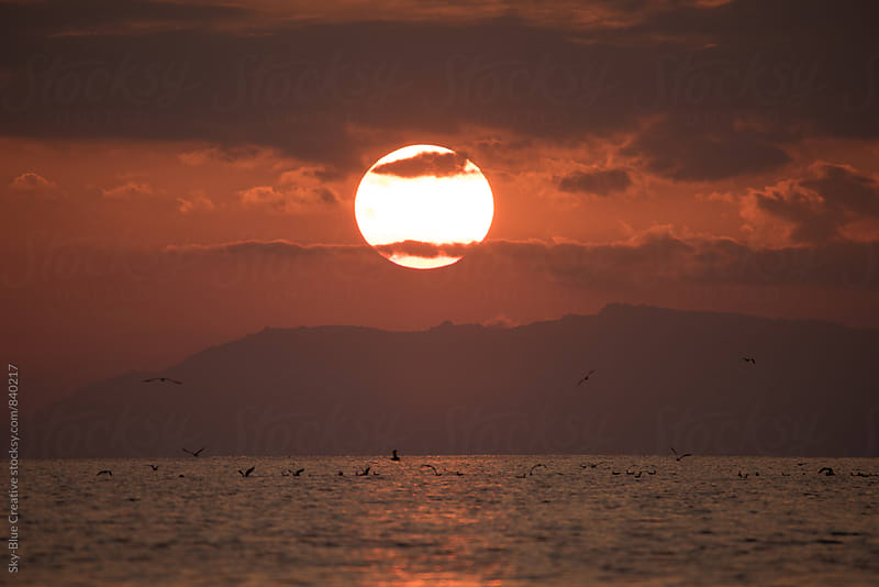 Setting sun on an empty beach, Sardinia  by Luca Pierro for Stocksy United