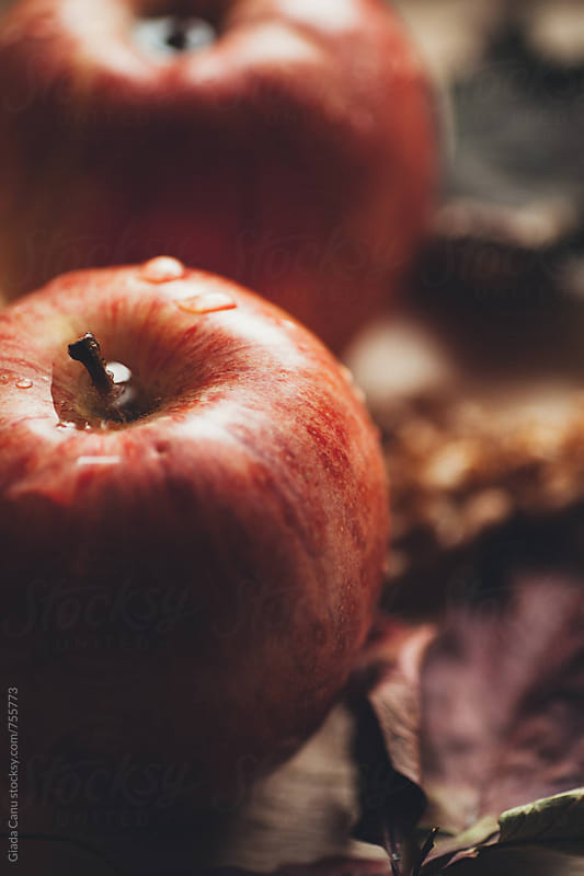 Apples by Giada Canu for Stocksy United