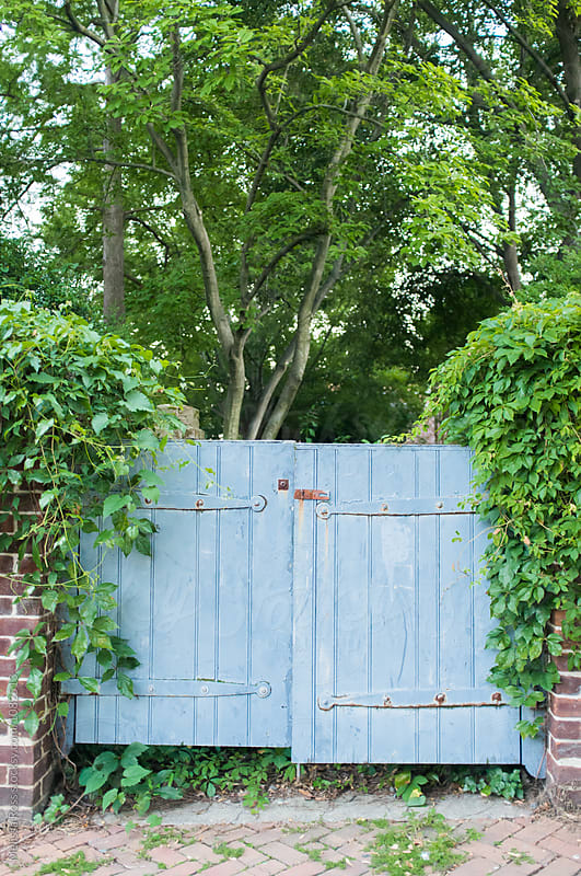 Blue painted garden gate. by Melissa Ross for Stocksy United