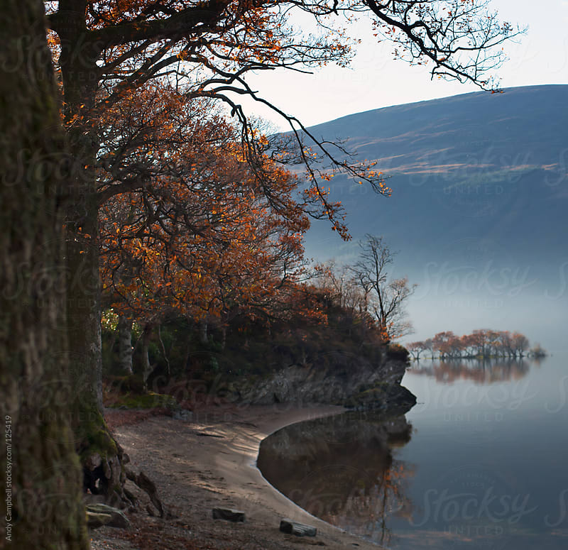 A beach shore on a Scottish loch in fall by Andy Campbell for Stocksy United