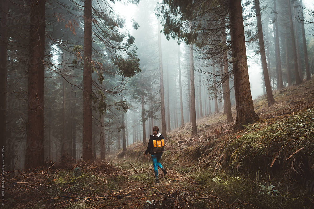 Woman Exploring A Foggy Forest By Addictive Creatives Stocksy United