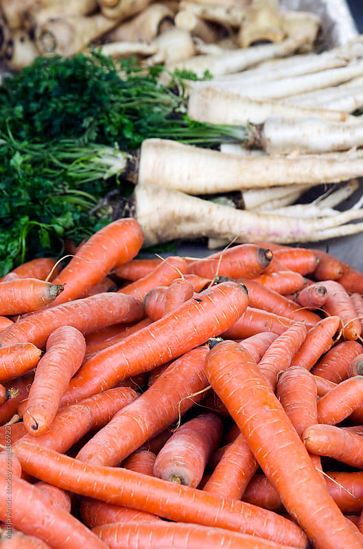Parsnip and carrots on the market by Marija Anicic for Stocksy United