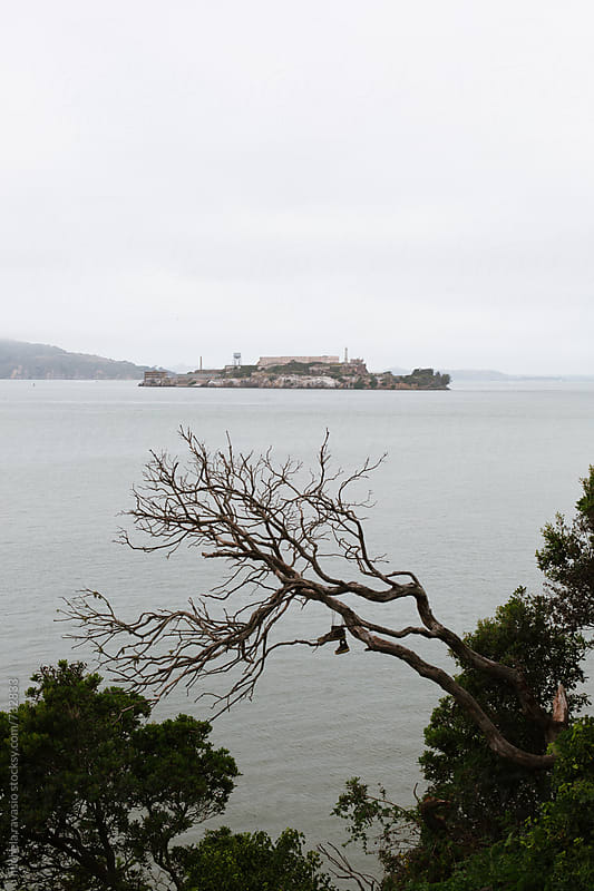 View of the island of Alcatraz in San Francisco by michela ravasio for Stocksy United