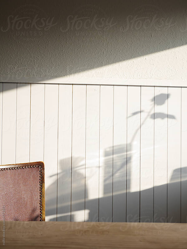 wall shadow white plank by rolfo for Stocksy United