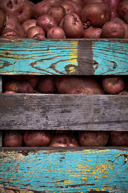 potatoes in a farm crate by alan shapiro for Stocksy United